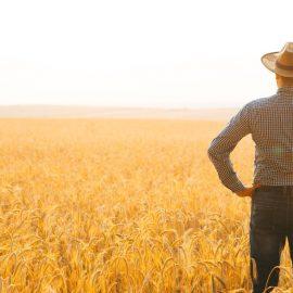 farmer-wheat-examining-expert-agriculture-harvest-environment-agronomist-agronomy-back-banner-barley_t20_omn1KP